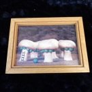 Vintage Incredible Edibles Mushroom Peas Framed Photograph