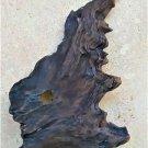 Portrait natural walnut tree bark (003)