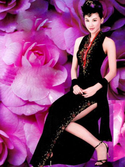 Chinese Tradition Customer Made Embroider Evening Gown/Dress [CDC-05]