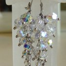 Crystal Caterpillar Earrings