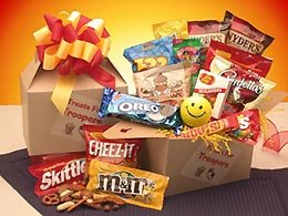 Treats For Troopers Snack Package care package