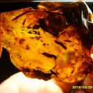 Natural  Genuine Baltic Amber Stone 33.40gr. N-41