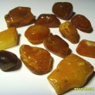 Lot 12 Amber pieces Natural baltic Amber polished pieces stones  20gr  N-45