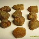 Lot of 10 unit  Genuine Baltic Amber Stones 19.70gr. C-2