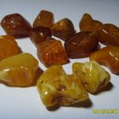 Natural Genuine 13 unit  Baltic Amber Stones 20.09grams  N-43