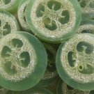 Cucumber Melon Loofah Soap