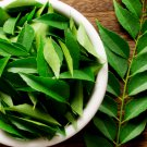 Organic Indian Curry Leaf Leaves dried 100g Kari Patta Murraya koenigii Herbal spicy for cholesterol