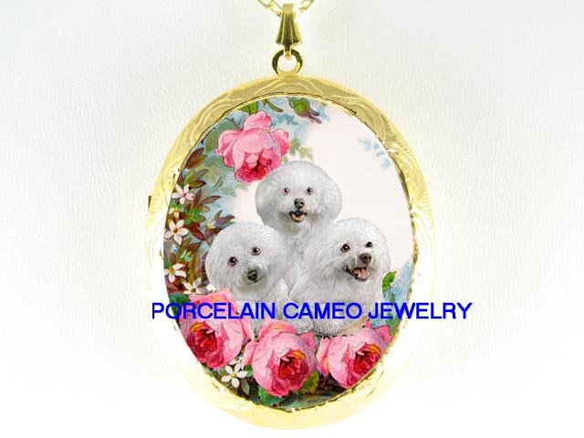 3 BICHON FRISE PUPPY DOG ROSE COLLAGE CAMEO LOCKET NK