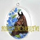 ZENYATTA CHAMPION HORSE FORGET ME NOT CAMEO LOCKET NK