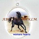 BLACK ARABIAN HORSE RUN CAMEO PORCELAIN LOCKET NECKLACE
