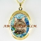 MAINE COON CAT FORGET ME NOT PORCELAIN CAMEO VINTAGE ANTIQUE SMALL LOCKET