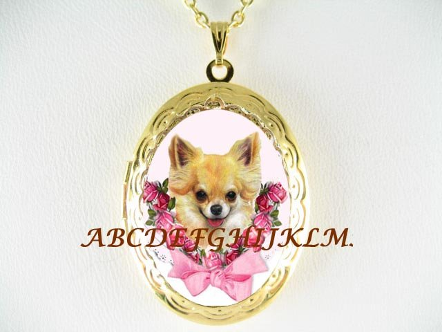 CHIHUAHUA DOG ROSE RIBBON PORCELAIN CAMEO ANTIQUE VINTAGE LOCKET NECKLACE