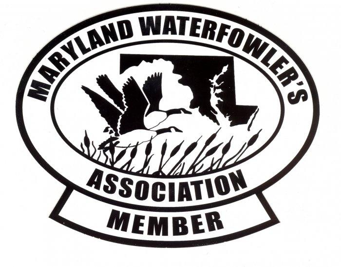 Novice Membership