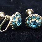 Blue Rhinestone Flower Screw Post Style Earrings
