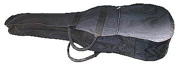 guitar bag  (dsp)