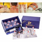 Hansol Professional Cupping Therapy Equipment Set with pumping handle 10 Cups