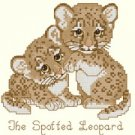 Baby Spotted Leopard