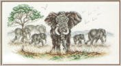 Elephants Grazing Picutre