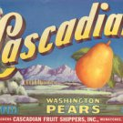 LOT of 10 all the Same Original Cascadian Pear Crate Labels