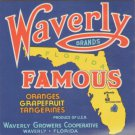 LOT of 10 Same Original Waverly Famous Vintage Orange Crate Label Waverly, FL.