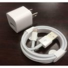 Apple iPhone Lightning USB Cable and Charger Adapter