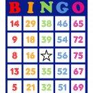 200 bingo cards, prints 1 per page, colorful