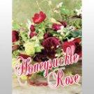 Honeysuckle Rose Oil Perfume Rollette 6 mil Sylvan Lane