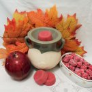 Cranberry Apple  Soy Wax Tarts 3 Piece Set