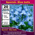 25 seeds SPANISH BLUEBEL cute flower garden decore