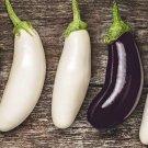 Bride Eggplant has tender creamy white flesh 25 seeds