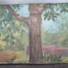 Painting Antique Painting on board View Landscape with Trees Original p1