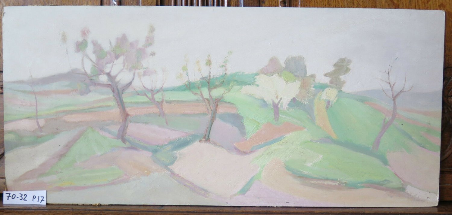 Antique Painting Oil on board Painting Landscape of Campaign Master Pancaldi p17