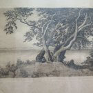 Engraving Antique landscape Countryside Trees Signed Axel Holm Vintage Print