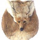 FOX MASK HEAD SPORRAN