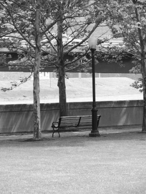 park bench gray scale