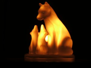 glowing wolf