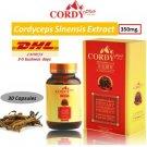 CORDY PLUS Tibetan Cordyceps Sinensis Extract 350mg Improve Immune Sexua