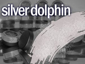 Paint Me Perfect Eye Shadow: Silver Dolphin