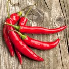 50 Chili pepper Seeds,Capsicam,Hot chili pepper seeds ,SW115