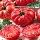 100 Tomato Ribbed seeds,tomato seeds,SW117