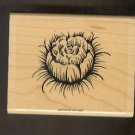 Rubber Stamp Scrapbooking - Wood Mount -  Stampin Up - Flower 3 X 4""