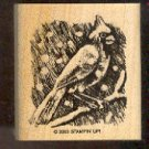 Rubber Stamp Scrapbooking - Wood Mount - New - Stampin Up - Cardinal in Snow 2.25X2.25""