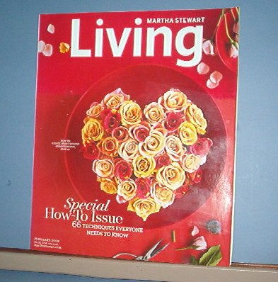 Magazine - Martha Stewart Living - No. 171 Feb 2008