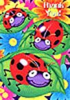Ladybug BIrthday Thank You Cards
