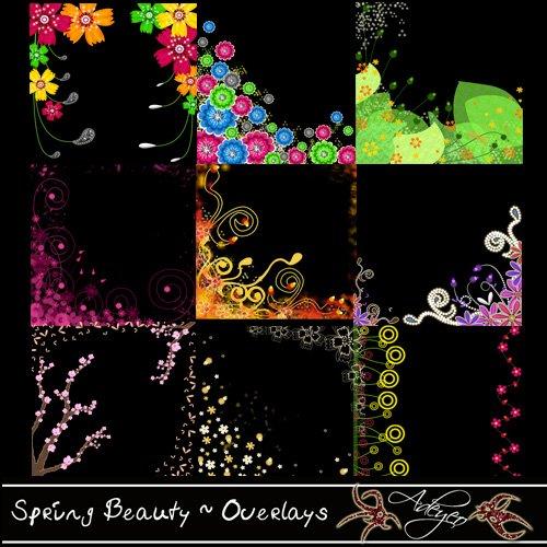 Adeyeo-Spring Beauty Overlays