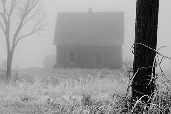 Foggy Morning 8x10 Photo Print (Unframed)