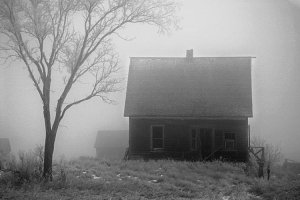 Eerie Fog 8x10 Photo Print (Unframed)