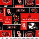 University of South Carolina Gamecocks 36x60