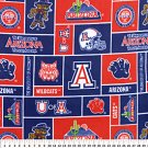 University of Arizona Wildcats 76x60