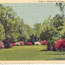 THE GREAT LAWN IN BELLINGRATH GARDENS MOBILE ALABAMA LINEN POSTCARD #182 UNUSED
